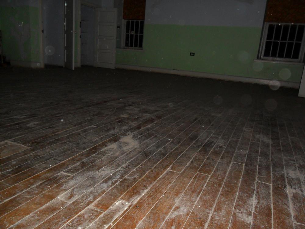 The Asylum, 2010-11 (4/6)
